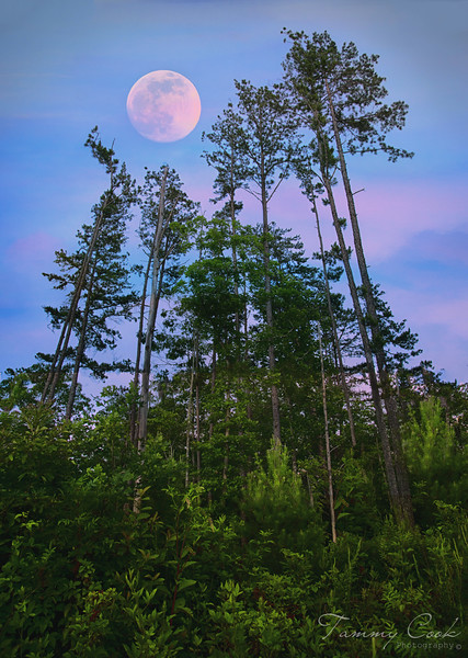 As the sun sets in the West, a brilliant full moon rises in the East
