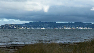 20180531 Stormy day in Wellington  _JM_0440