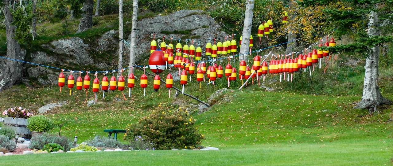 Lobster Bouys on a Line