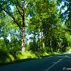 P1050989-Carretera en Schleswig Holstein, Alemania