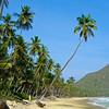 DSC00224-Playa Grande, Puerto Colombia, Edo. Aragua