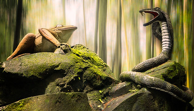 Frog n Snake