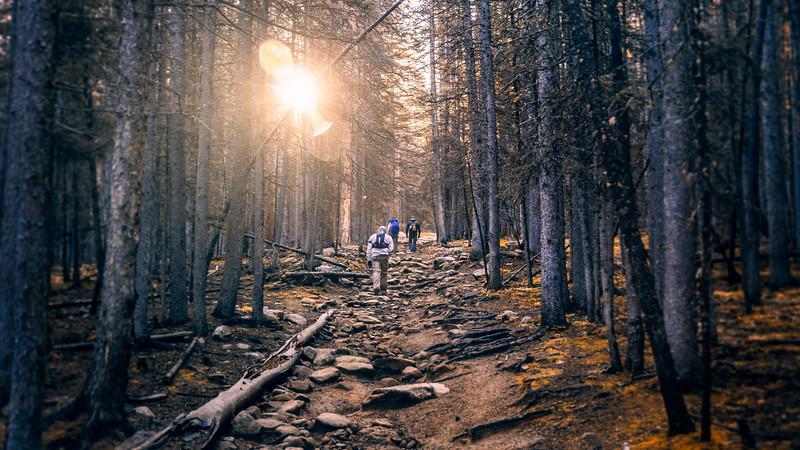 Pikes Peak Trails