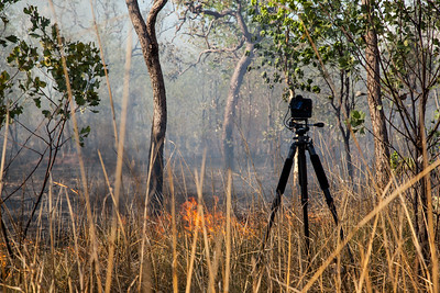 Timelapse camera in a  bush fire, Western Australia