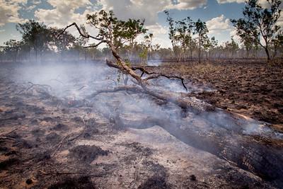 Western Australia. Land after a bush fire.