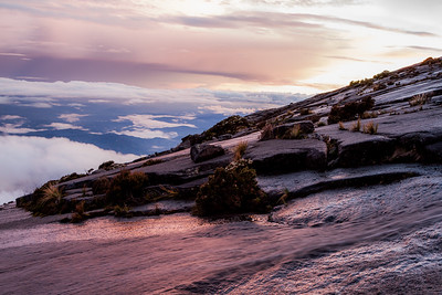 Granite slopes of the Eastern plateau, close to the summit of Mount Kinabalu, Borneo.