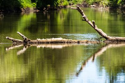 Tualatin river