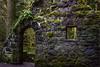 Lower Macleay Trail homesite