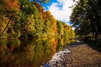ILF 15 Autumn on the Teviot (11)