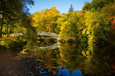 ILF 15 Autumn on the Teviot (12)