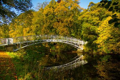 ILF 15 Autumn on the Teviot (13)
