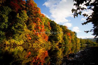 ILF 15 Autumn on the Teviot (6)