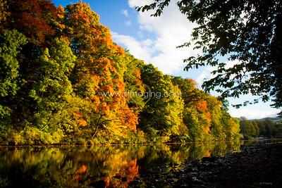 ILF 15 Autumn on the Teviot (8)