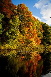 ILF 15 Autumn on the Teviot (5)
