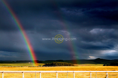 (B013) Rainbows End