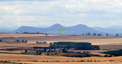 (B017) Eildon Hills from Branxton Hill