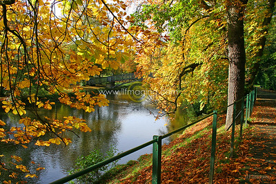 (B004) Laurie Bridge in Autumn
