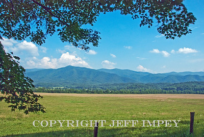 Scene in Cades Cove Tennessee near Gatlinburg
