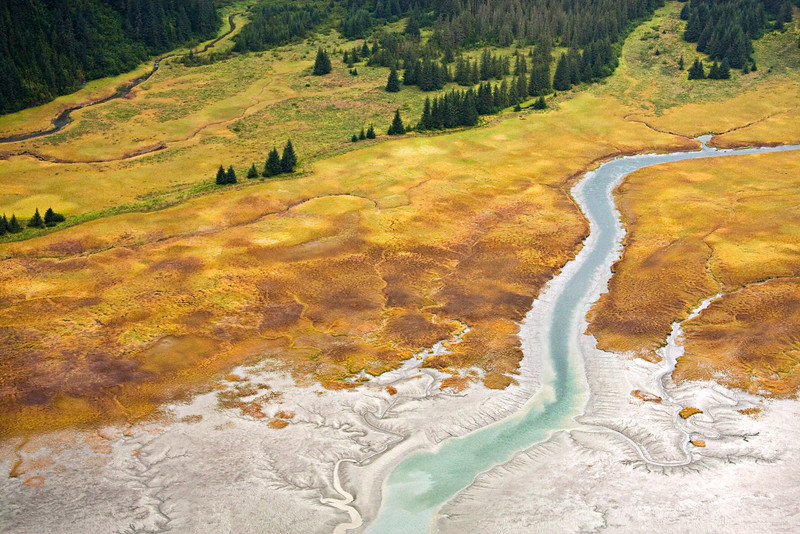 Aerial patterns in Alaska's Tongass National Forest - near Juneau, Alaska