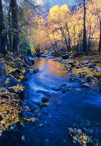 Autumn in American Fork Canyon, Utah