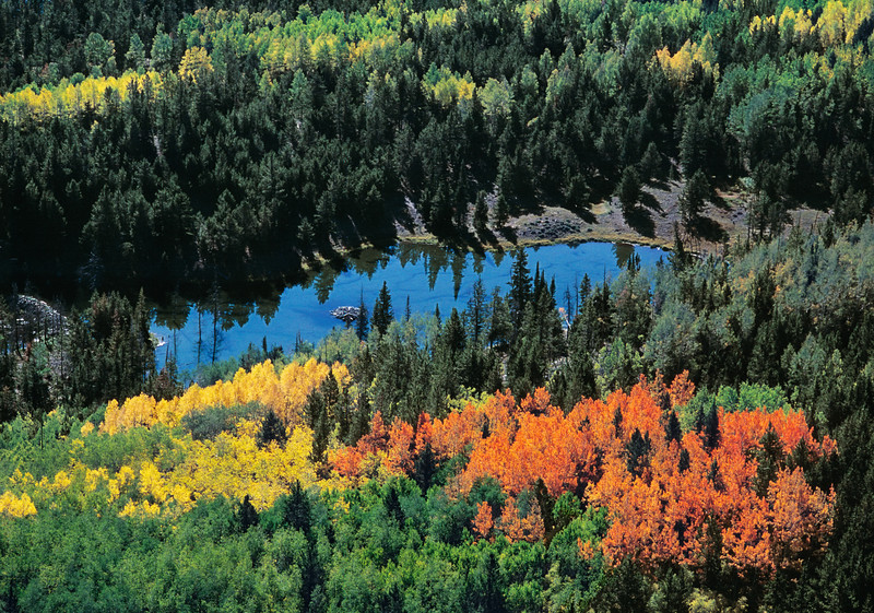 Bear pond aerial in Wasatch-Cache National Forest of Utah in autumn
