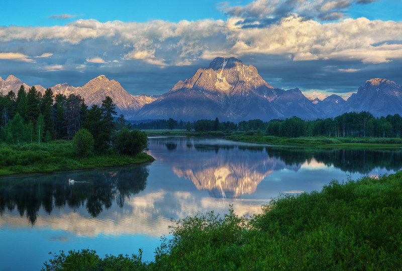 Sunrise on Mount Moran at Oxbow Bend, Grand Teton National Park - white Pelican on Snake River.<br /> RESTRICTIONS on this image: Prints of this image, for personal use, can be ordered here. However, any prints for commercial use, or any image download must be licensed from Getty Images.