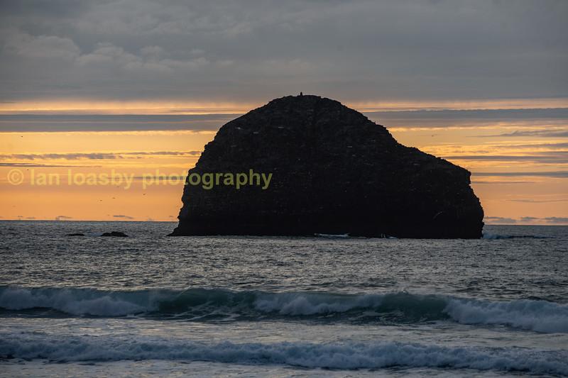 Gull rock off Trebarwith Strand