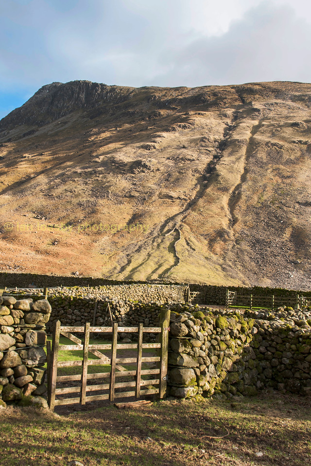 Wooden gate to a field in a dry stone walll.