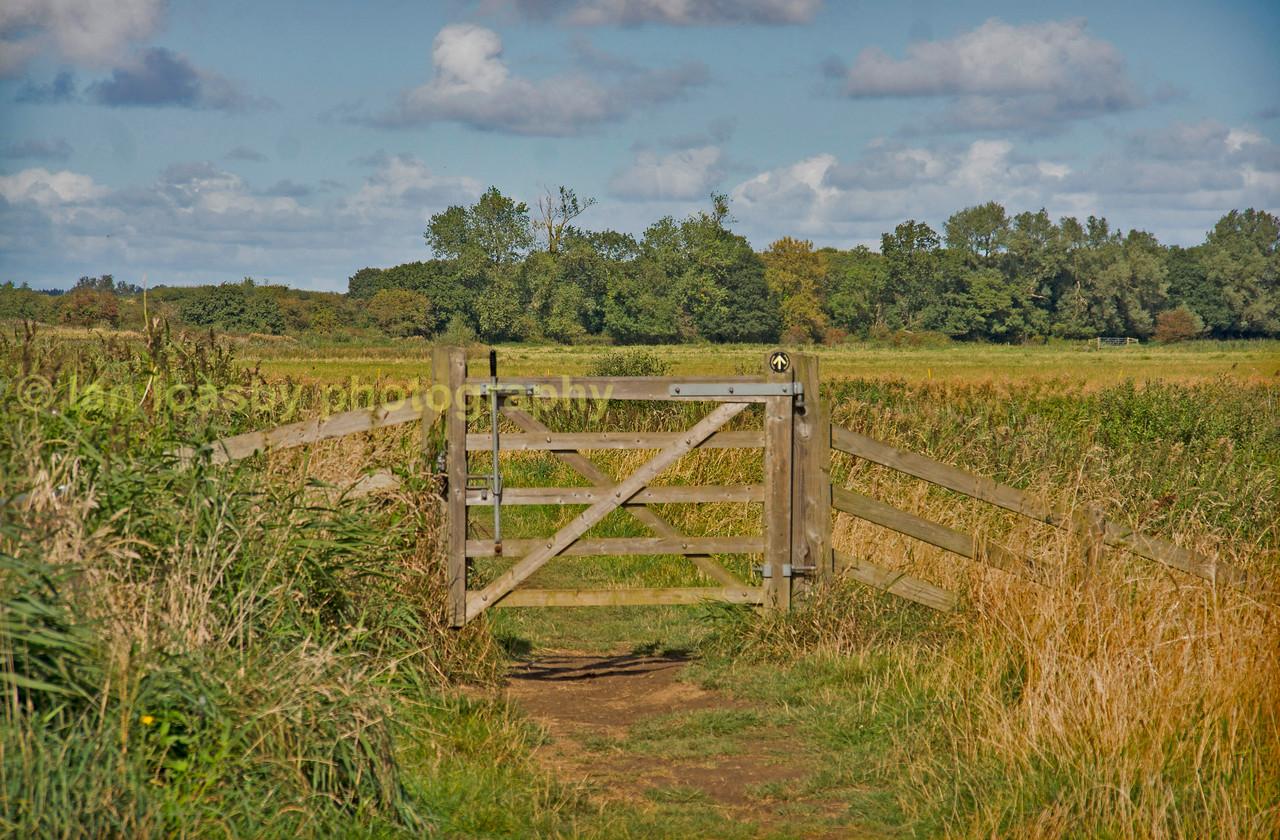 What's through the gate?