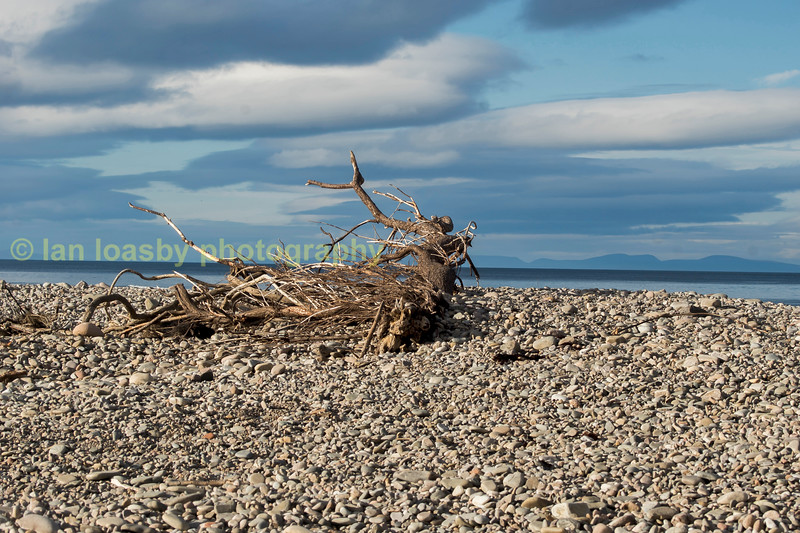 The pebbled beach at the mouth of the Spey river near Lossimouth Aberdeenshire