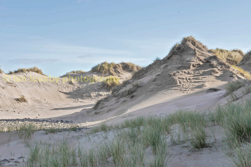 The sand dunes at Rattery Head Aberdenshire