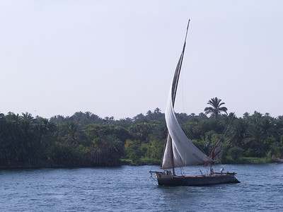 Egypt. Scenes from the Nile. The graceful sail of a Felucca.
