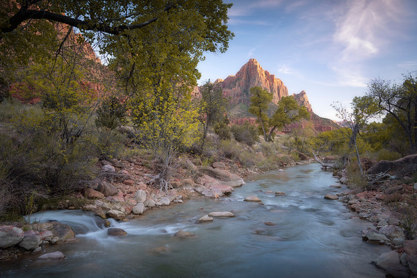 Spring Watch    Zion National Park