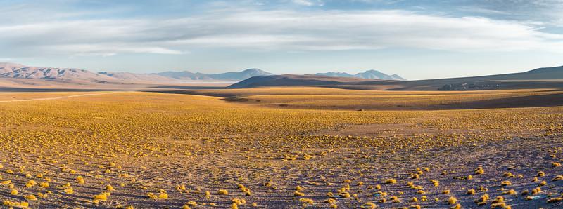 Alto Plano, Sajama National Park, Bolivia