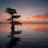 Sunrise at Blue Cypress Lake, Florida
