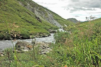 Savage River, Denali National Park, AK