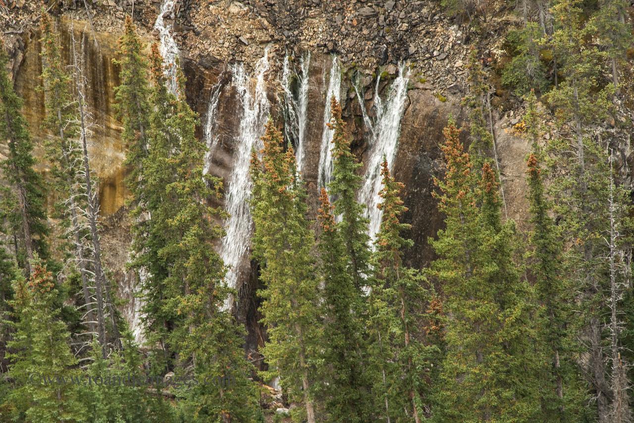 Sunwapta Valley, Jasper Park, Alberta, Canada