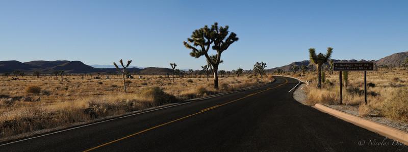 Landscapes USA