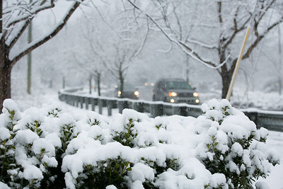 2MPhotos-2018 - Snow-33070