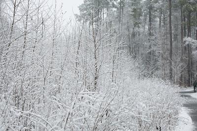2MPhotos-2018 - Snow-32992