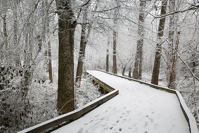 2MPhotos-2018 - Snow-32931