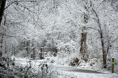 2MPhotos-2018 - Snow-33022