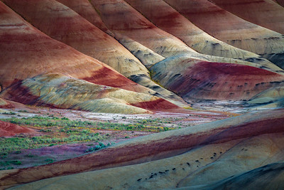 Painted Hills IV