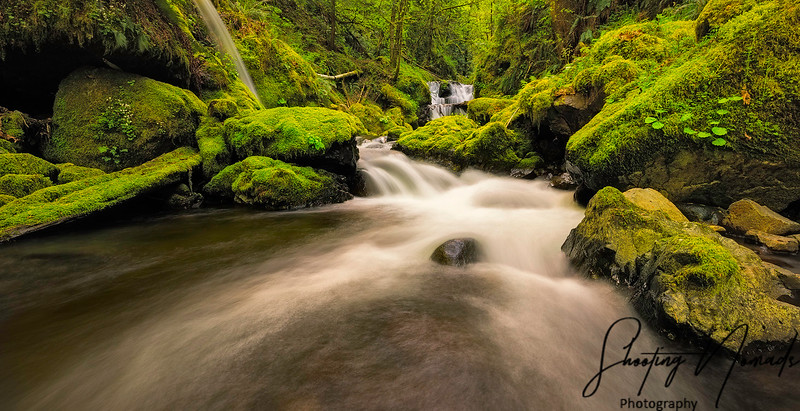 Gorton Creek, OR