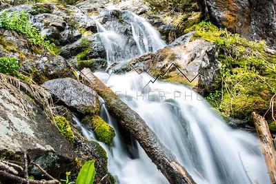 North Golddust Creek, CO