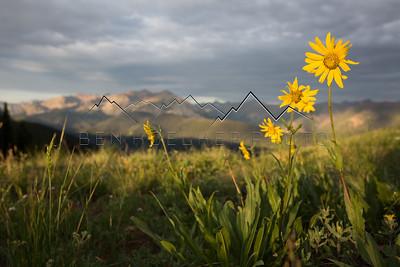 Elk Range, CO