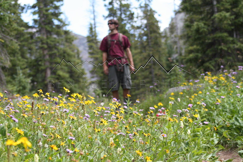 Mark Koelker amidst the flowers in the Sawatch Range, CO
