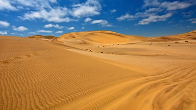 The Namib is a coastal desert
