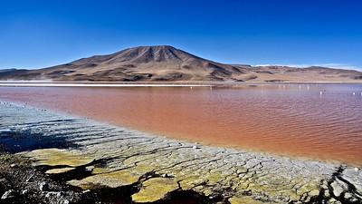 Laguna Colorada - Atacama Desert