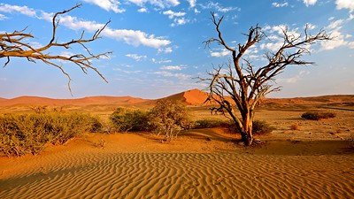 Sossusvlei is a salt and clay pan - Namib-Naukluft NP